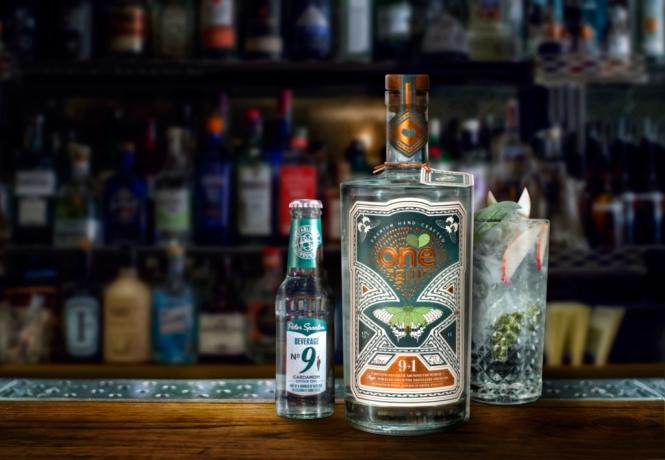 Gin Tastings at home