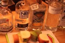 Gin Tasting Peak District