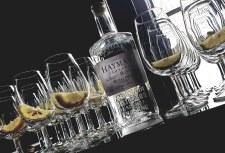 Gin Tastings